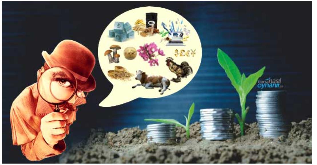 Evren Devrim Zelyut: Parayı nereye koyalım?