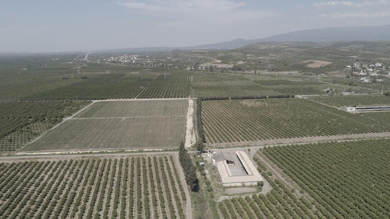 İsotlar Tarım, narenciyede 50 bin ton üretim hedefliyor