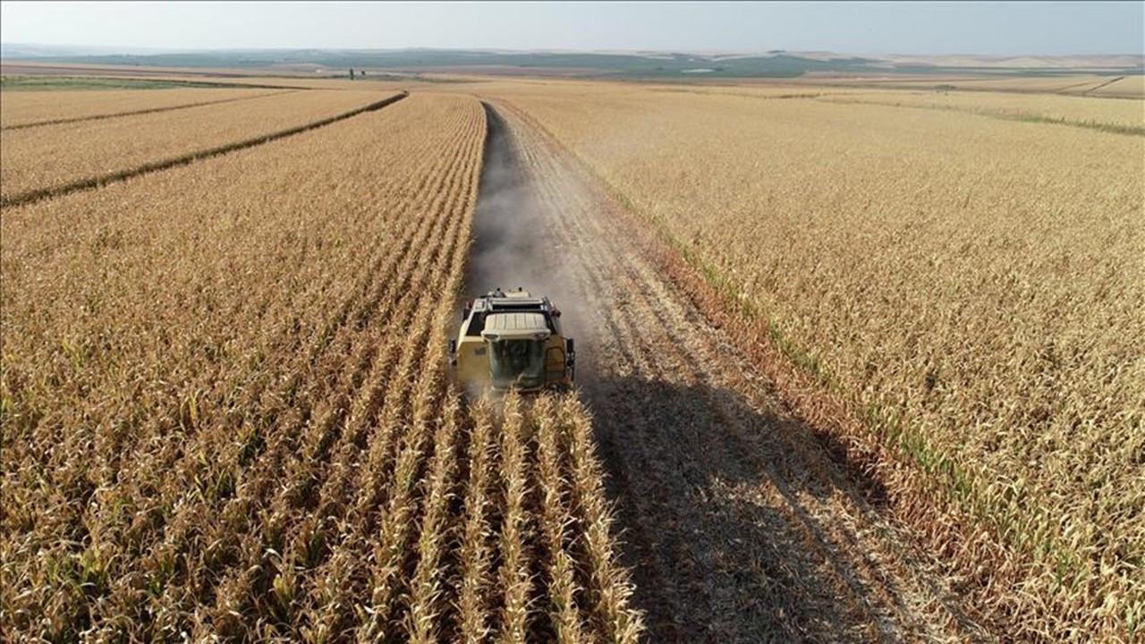 Tarım sigortalarında toplam sigorta bedeli yüzde 50 arttı
