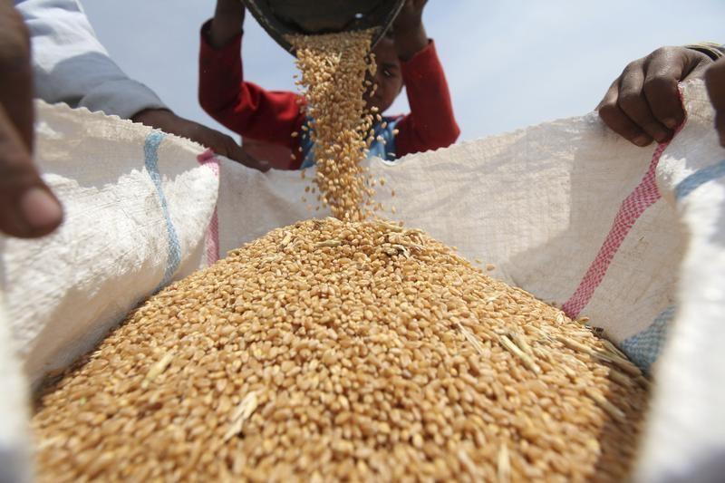 Tarım ürünlerindeki fiyat artışı son 26 ayın en yükseğinde