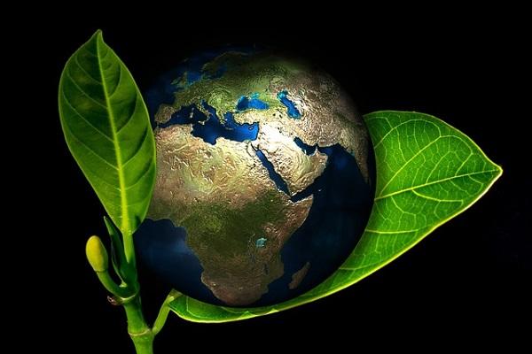 Türkiye İMSAD, 'Yeşil Mutabakat'ı değerlendirdi