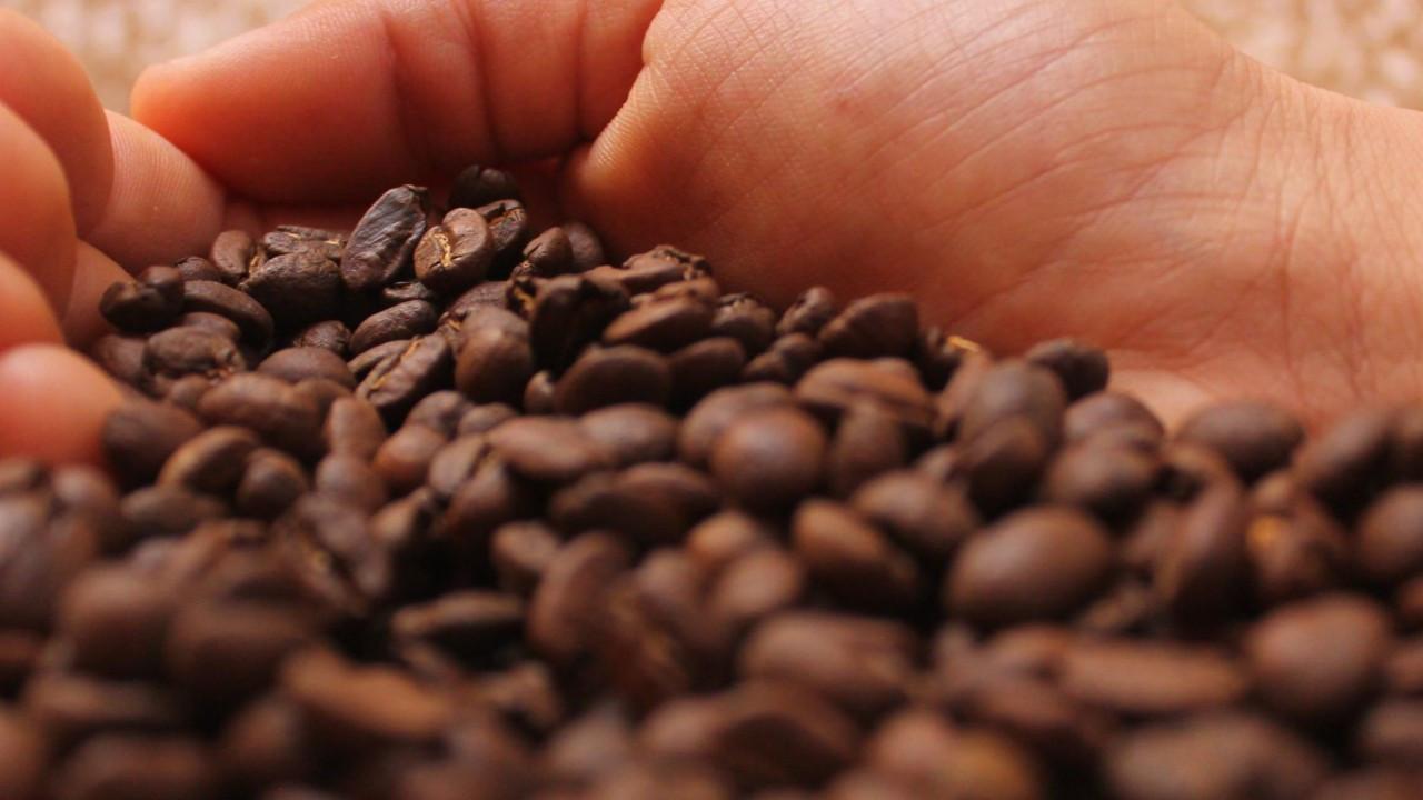 Vietnamlı kahve çekirdeği ihracatçısıyüzde 49 hisse satacak